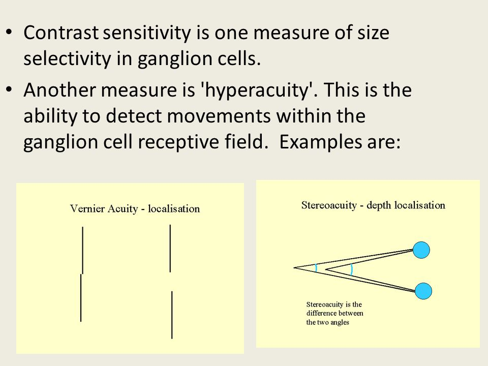 Contrast sensitivity is one measure of size selectivity in ganglion cells.