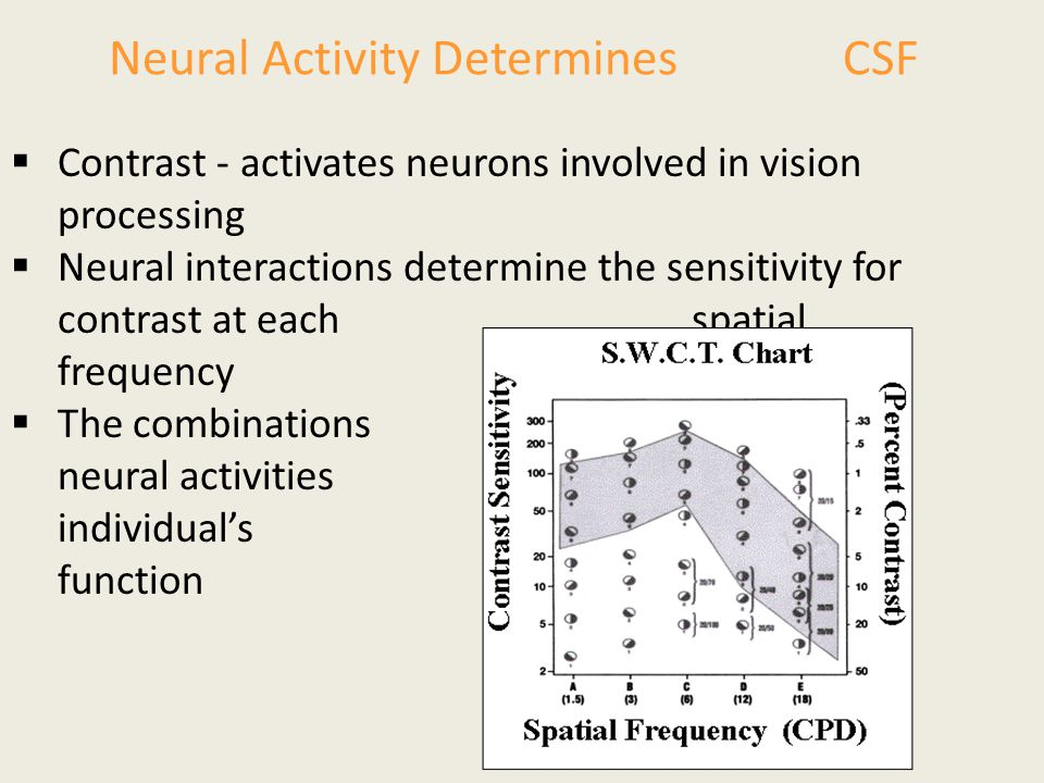 Neural Activity Determines CSF