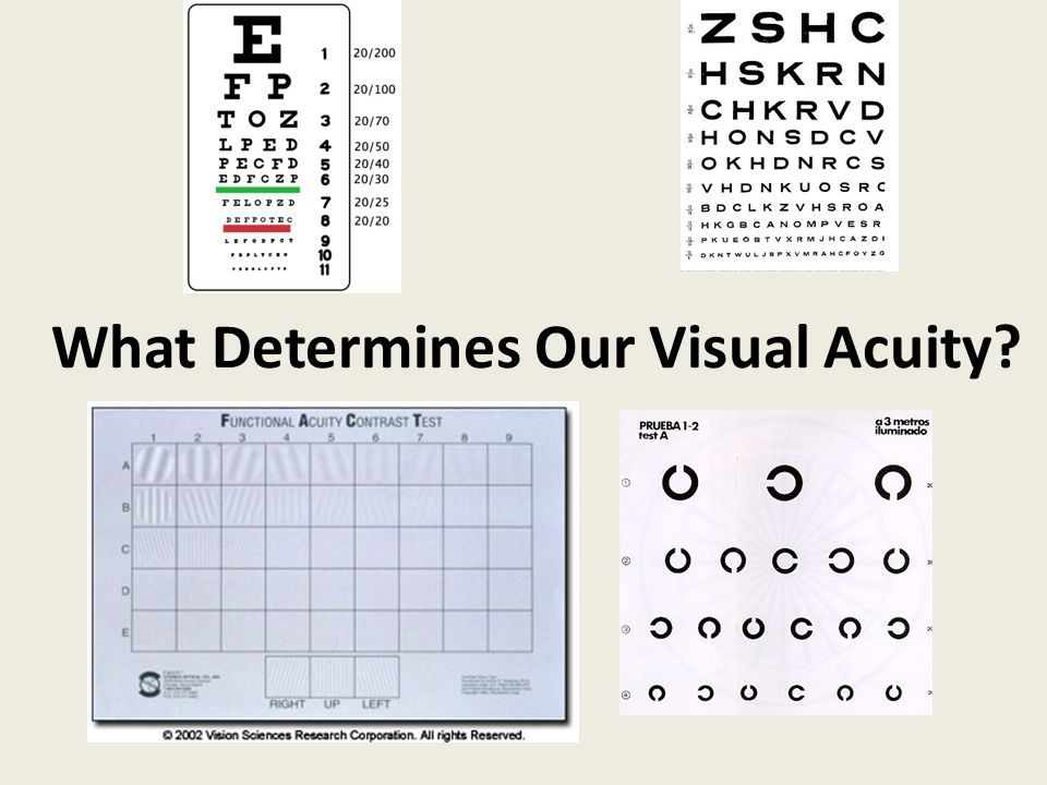 What Determines Our Visual Acuity