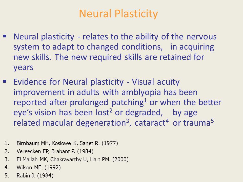 Neural Plasticity
