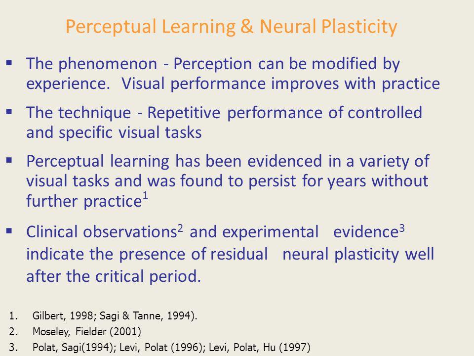 Perceptual Learning & Neural Plasticity