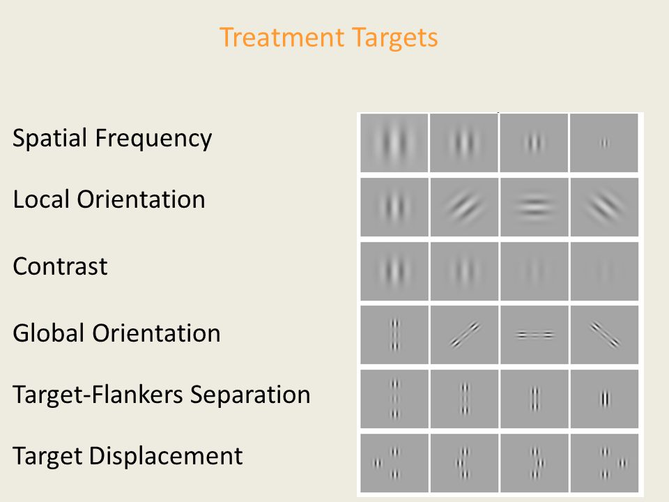 Treatment Targets Spatial Frequency Local Orientation Contrast