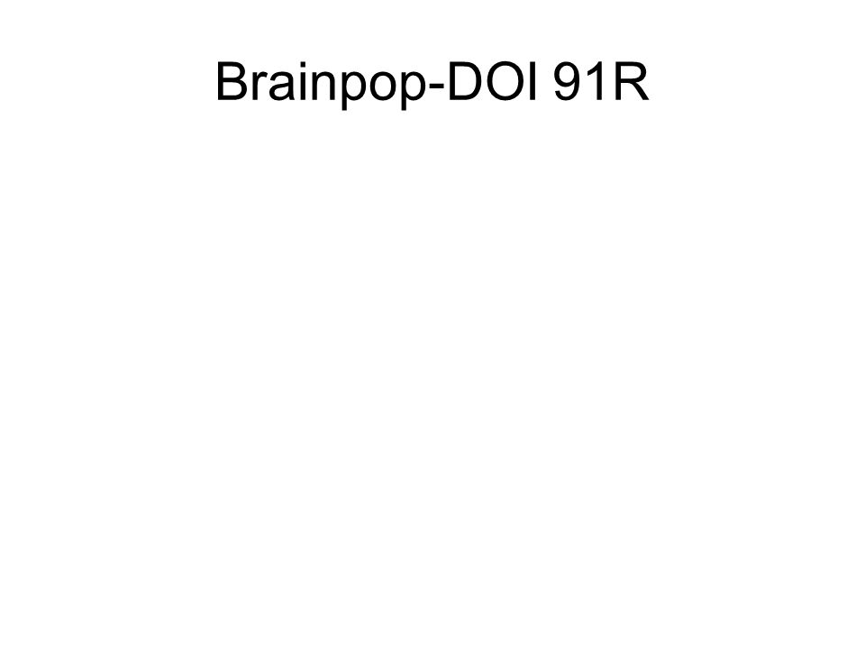 Brainpop-DOI 91R
