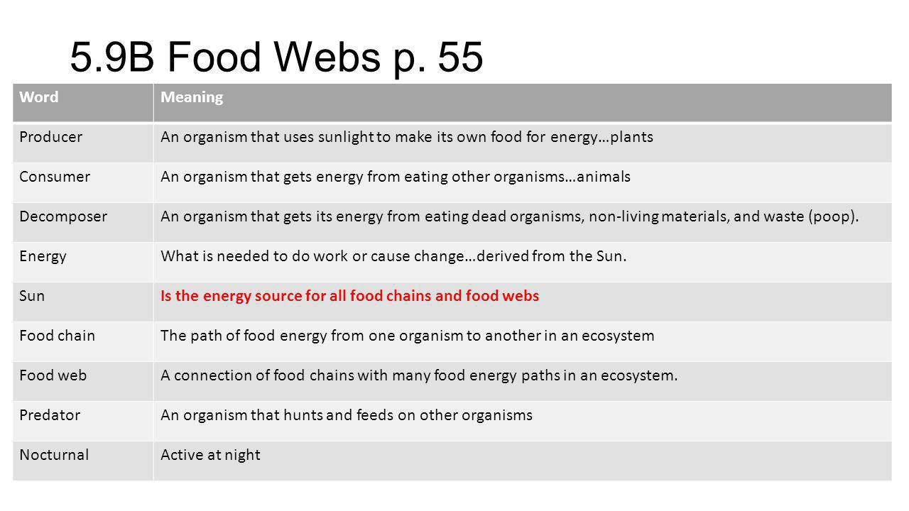 5.9B Food Webs p. 55 Word Meaning Producer