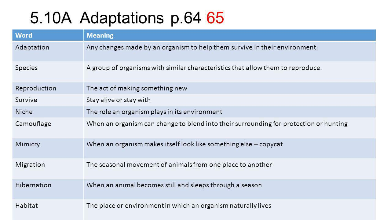 5.10A Adaptations p.64 65 Word Meaning Adaptation