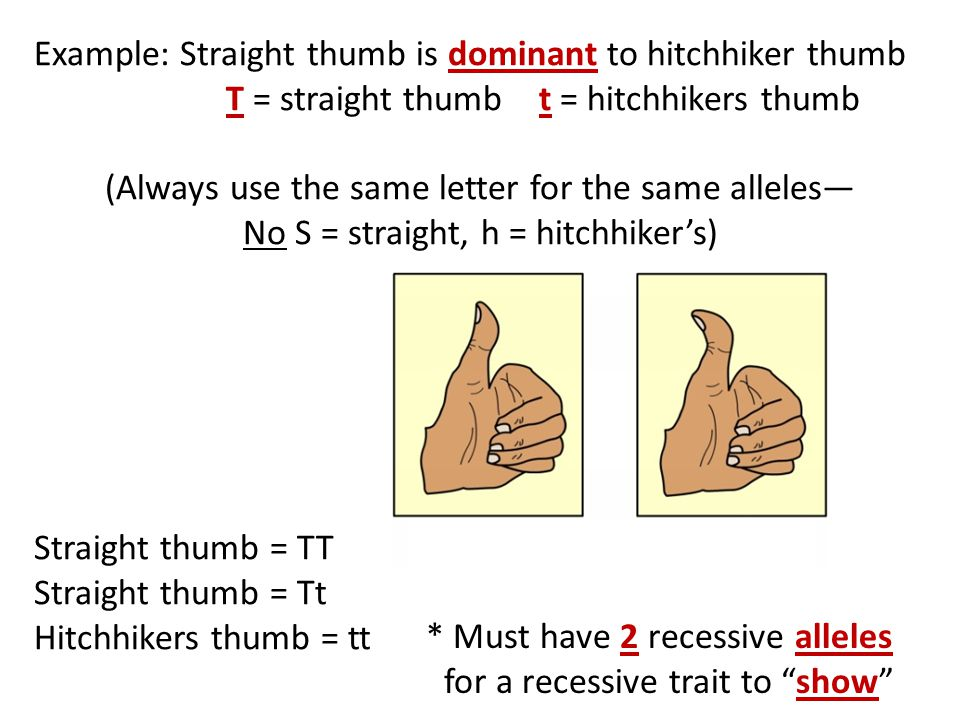 (Always use the same letter for the same alleles—