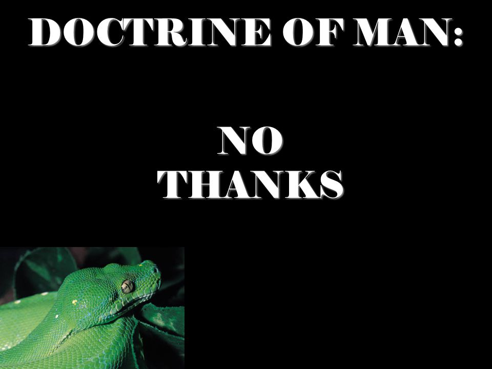 DOCTRINE OF MAN: NO THANKS