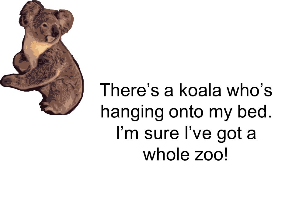 There's a koala who's hanging onto my bed