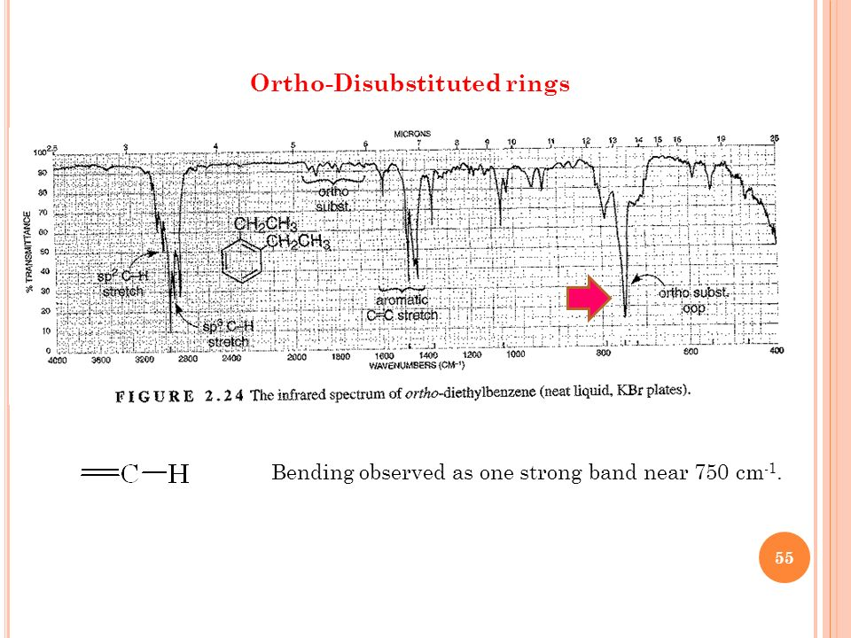 Ortho-Disubstituted rings