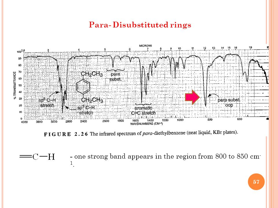 Para- Disubstituted rings