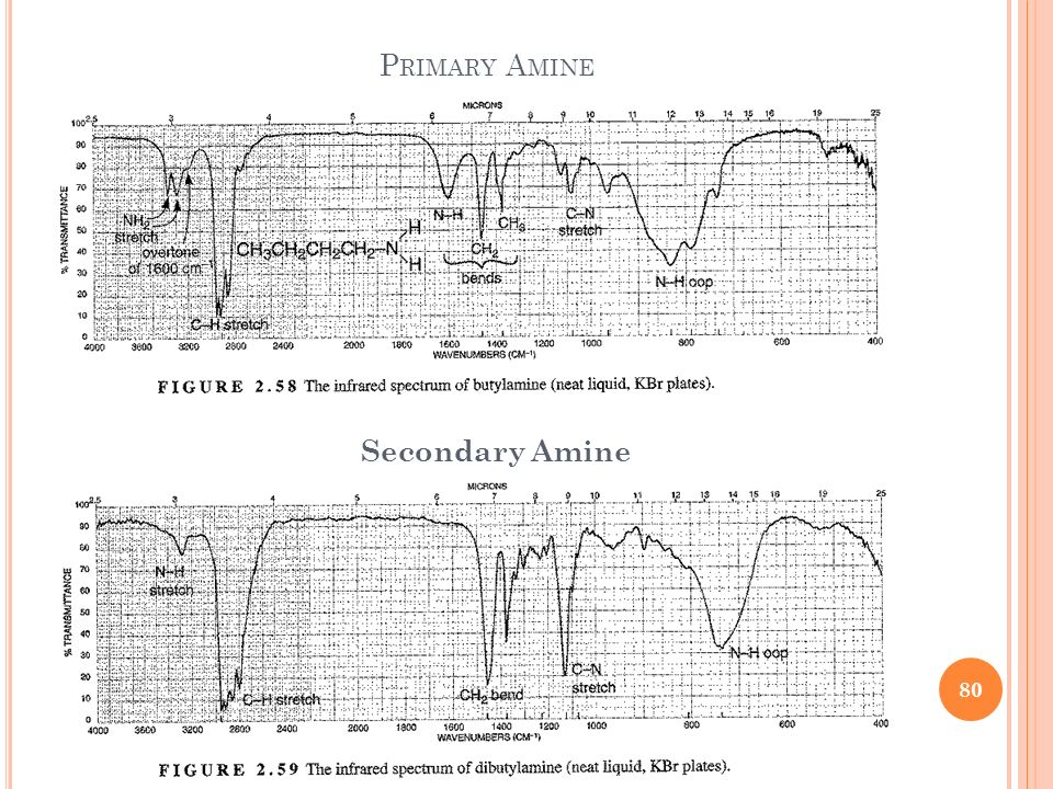 Primary Amine Secondary Amine