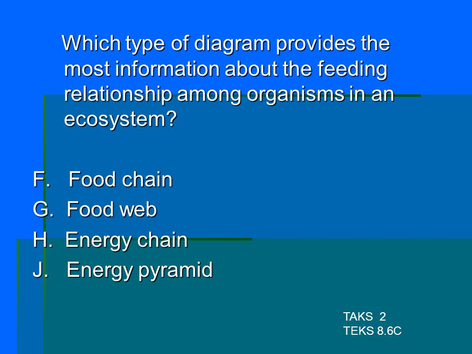 Which type of diagram provides the most information about the feeding relationship among organisms in an ecosystem