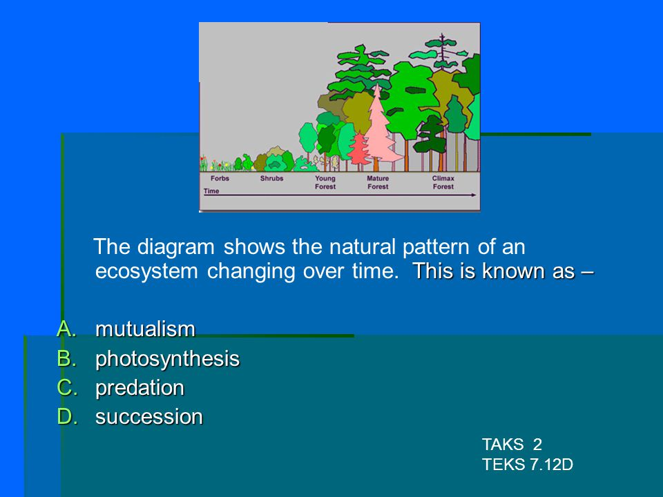 The diagram shows the natural pattern of an ecosystem changing over time. This is known as –
