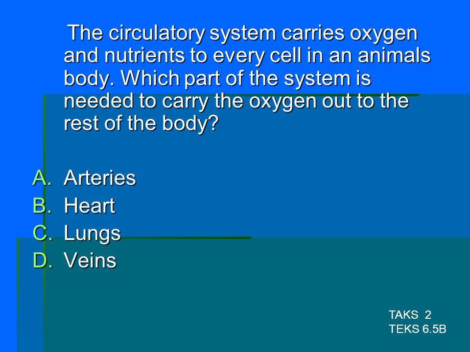 The circulatory system carries oxygen and nutrients to every cell in an animals body. Which part of the system is needed to carry the oxygen out to the rest of the body