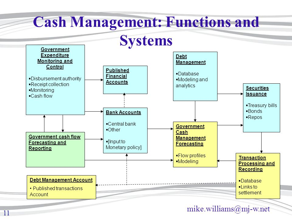 Cash Management: Functions and Systems