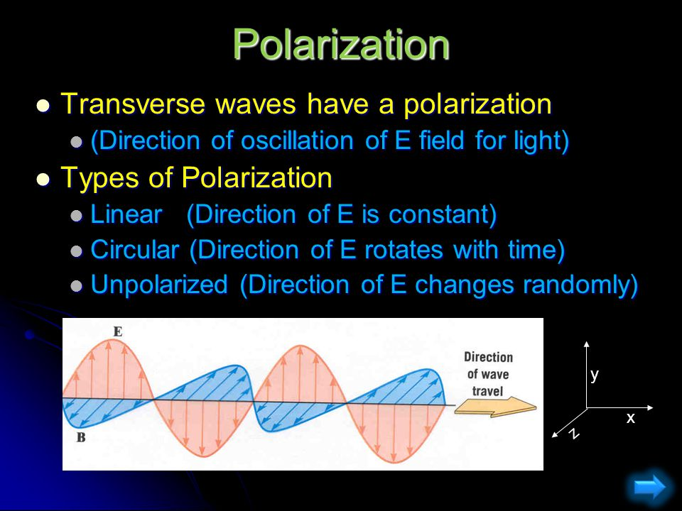 Polarization Transverse waves have a polarization