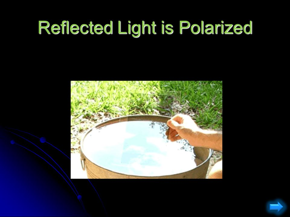 Reflected Light is Polarized