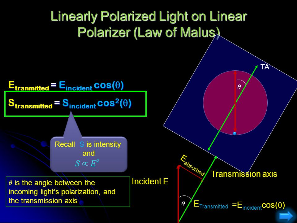 Linearly Polarized Light on Linear Polarizer (Law of Malus)