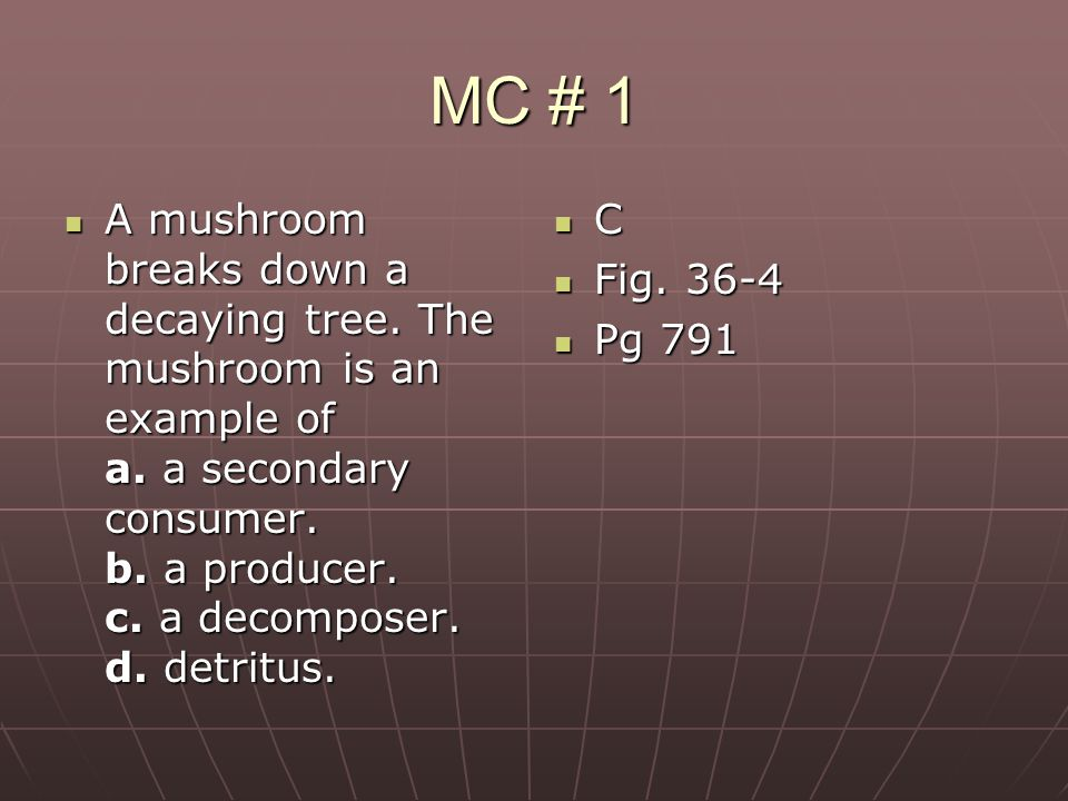 MC # 1 A mushroom breaks down a decaying tree. The mushroom is an example of a. a secondary consumer. b. a producer. c. a decomposer. d. detritus.