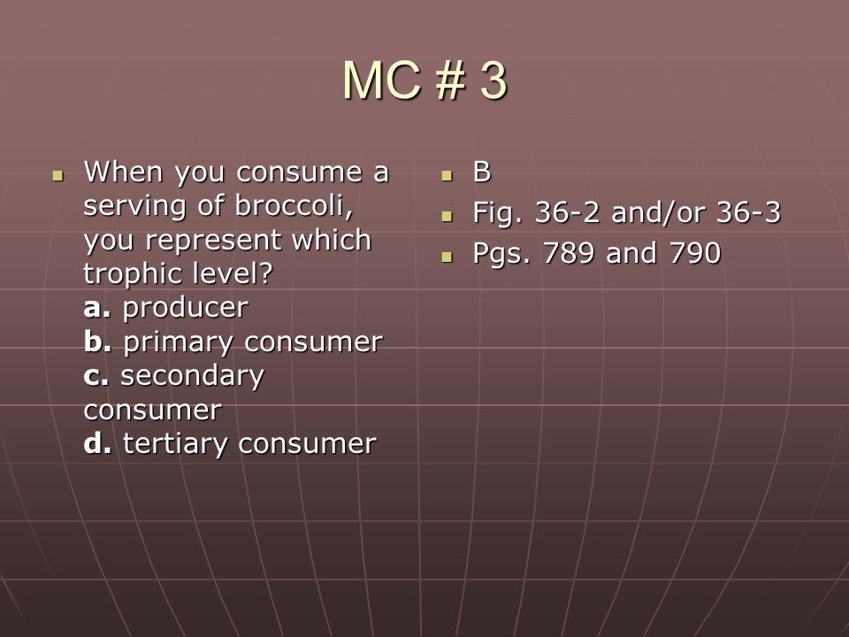 MC # 3