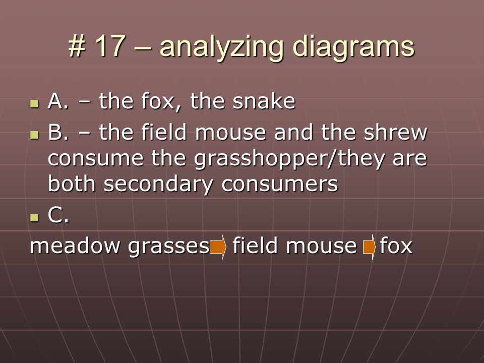 # 17 – analyzing diagrams A. – the fox, the snake