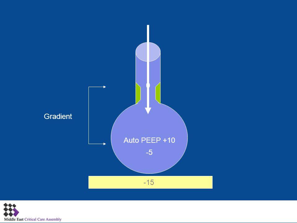 Gradient Auto PEEP +10 -5 -15