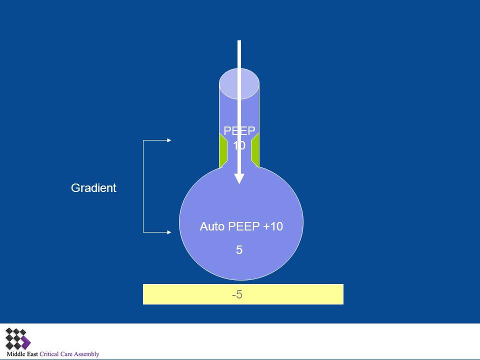 PEEP 10 Gradient Auto PEEP +10 5 -5