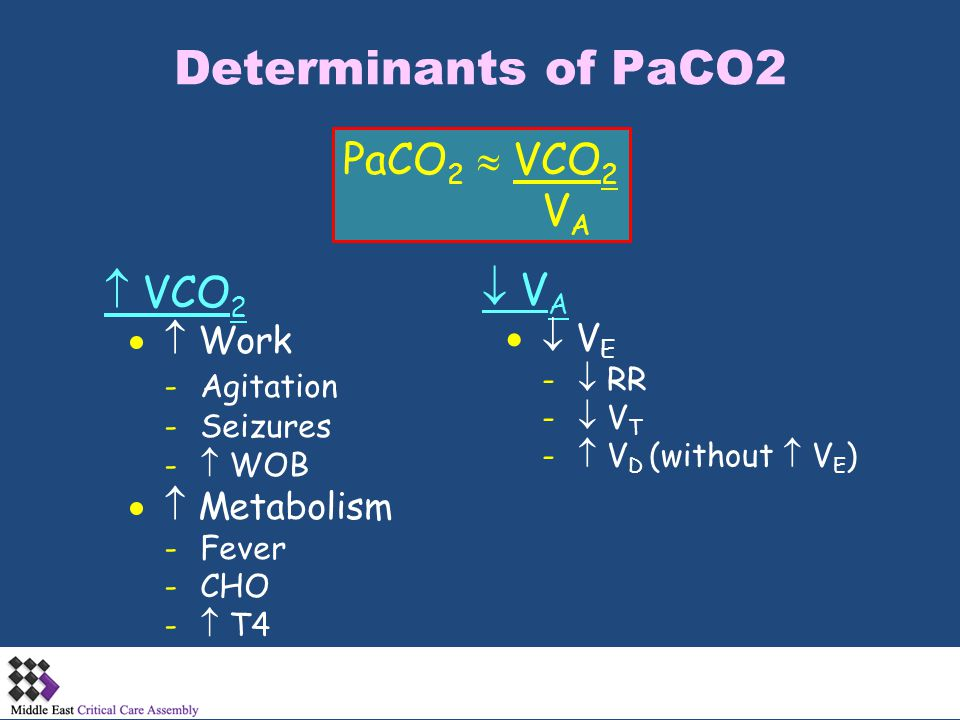 Determinants of PaCO2 PaCO2  VCO2 VA  VCO2  VA   Work   VE