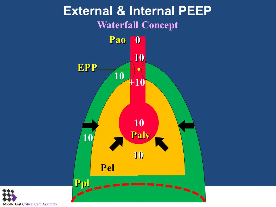 External & Internal PEEP