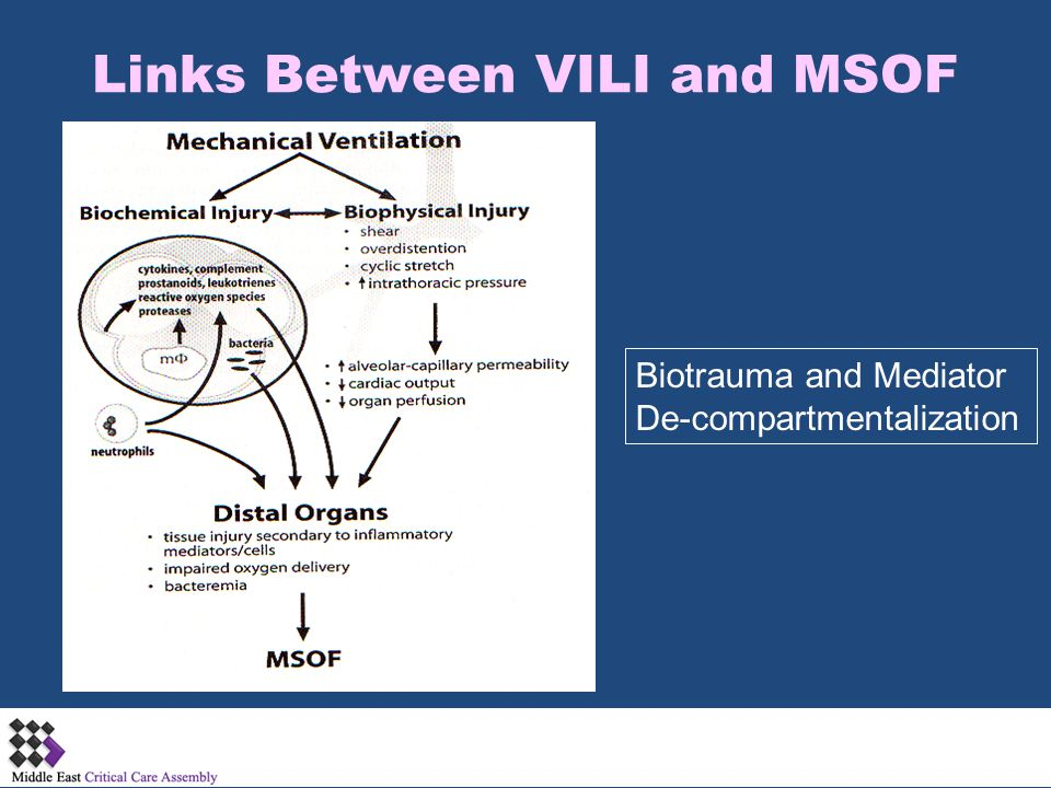Links Between VILI and MSOF