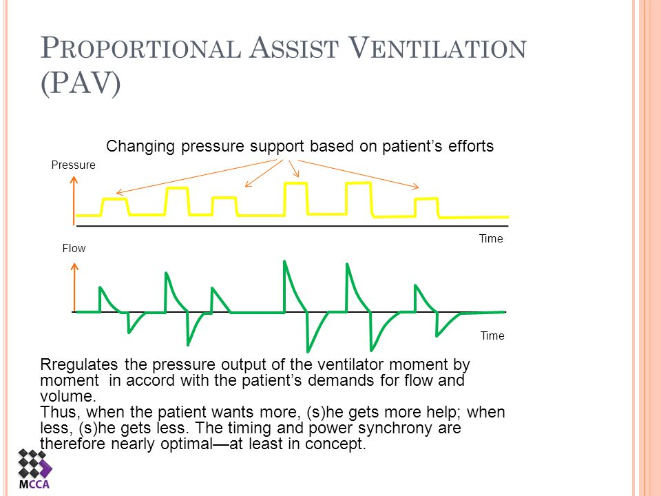 Proportional Assist Ventilation (PAV)