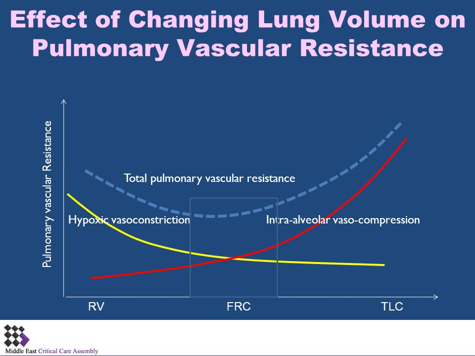 Effect of Changing Lung Volume on Pulmonary Vascular Resistance