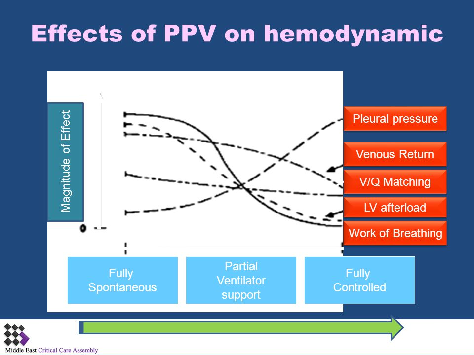 Effects of PPV on hemodynamic