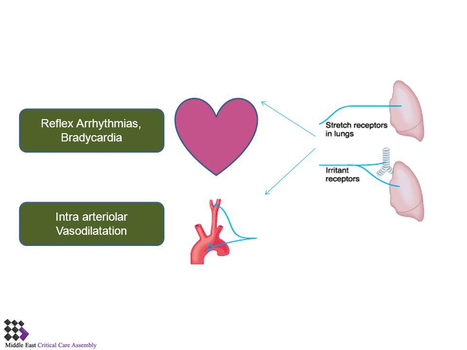 Intra arteriolar Vasodilatation