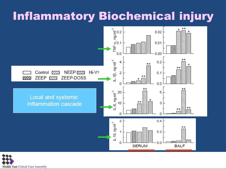Inflammatory Biochemical injury