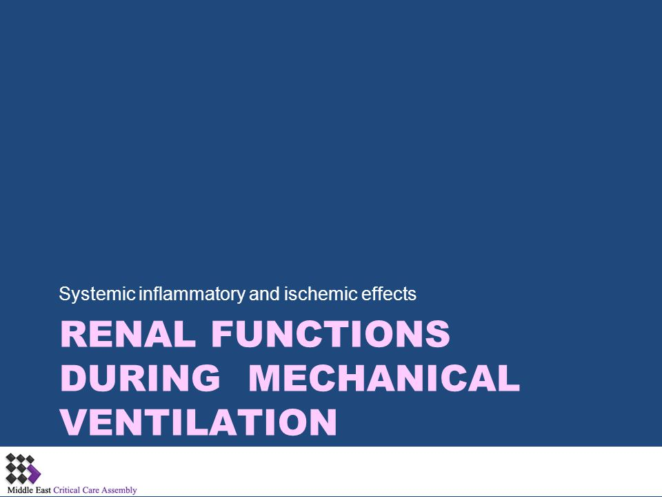 Renal Functions during Mechanical Ventilation