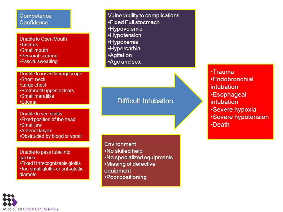 Difficult Intubation Trauma Endobronchial intubation