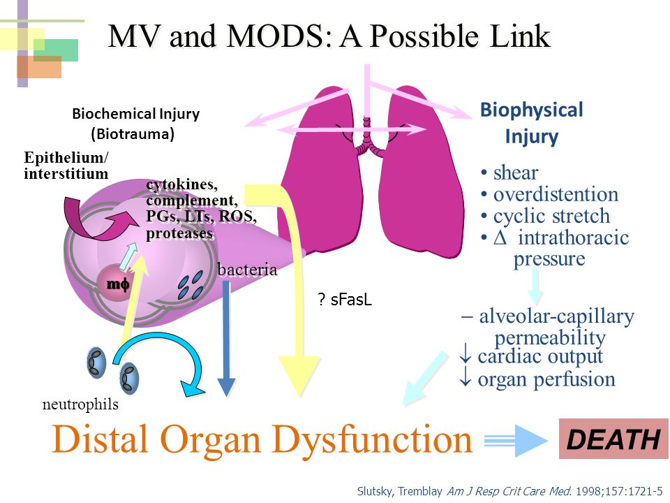 Distal Organ Dysfunction
