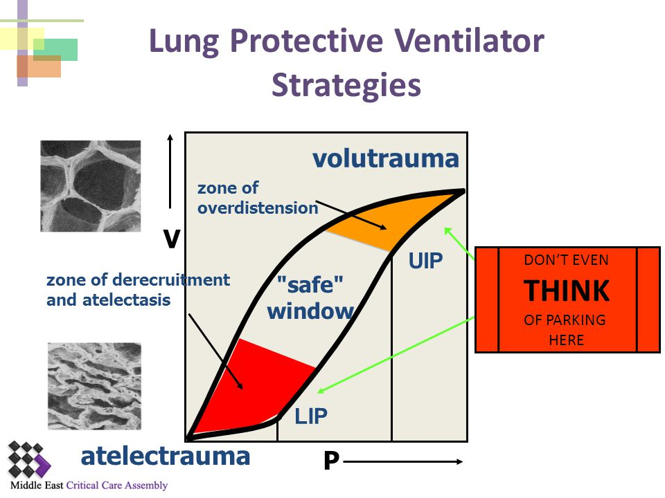 Lung Protective Ventilator Strategies