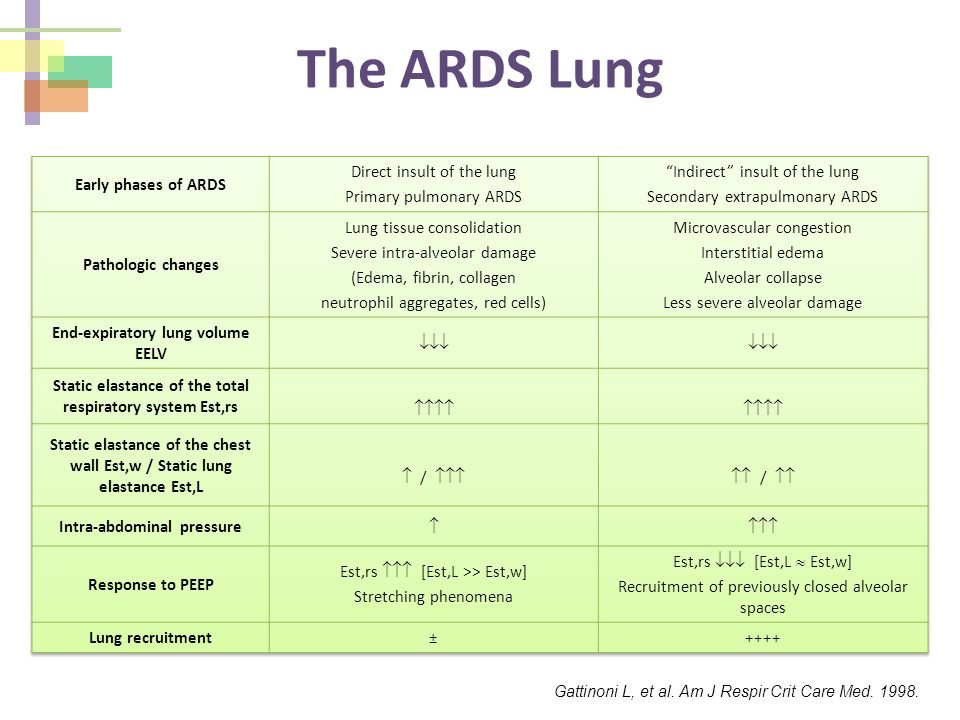 The ARDS Lung Early phases of ARDS Direct insult of the lung