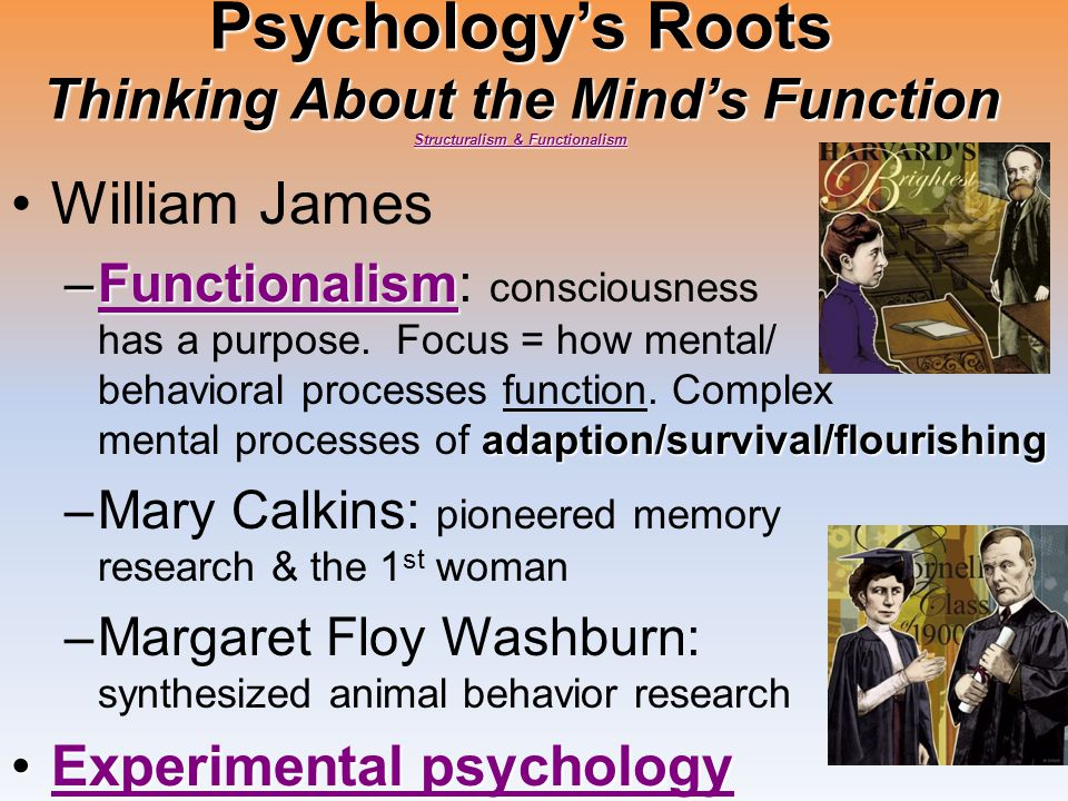 Psychology's Roots Thinking About the Mind's Function Structuralism & Functionalism