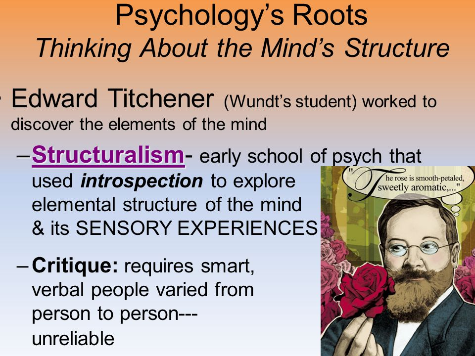 Psychology's Roots Thinking About the Mind's Structure