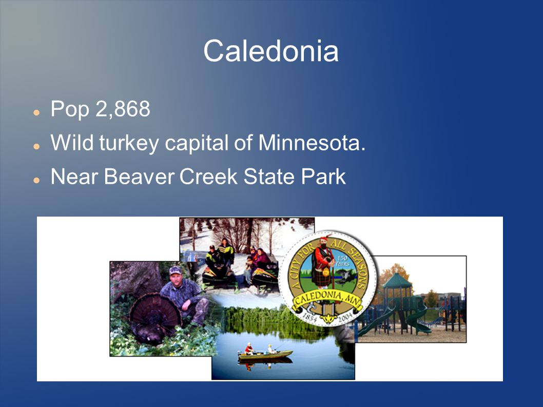 Caledonia Pop 2,868 Wild turkey capital of Minnesota.