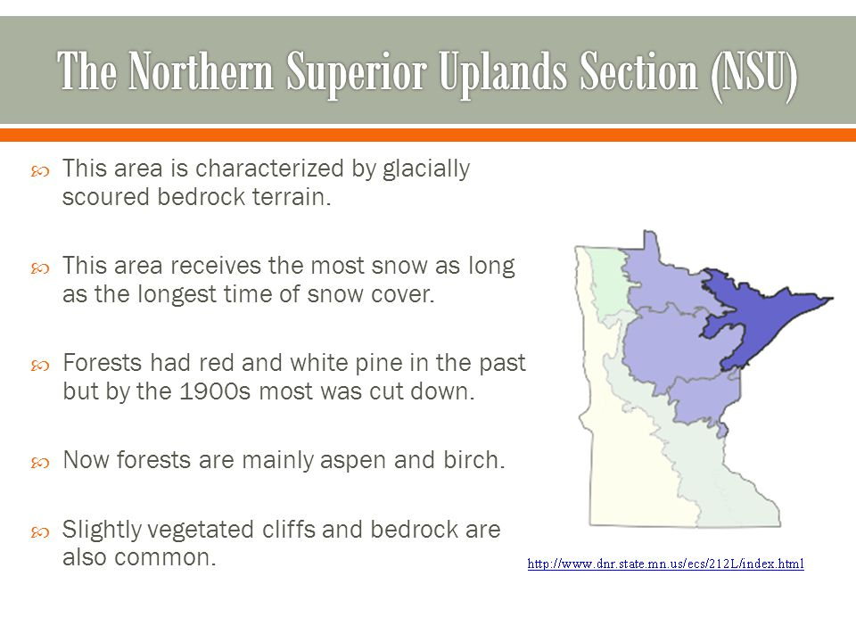 The Northern Superior Uplands Section (NSU)