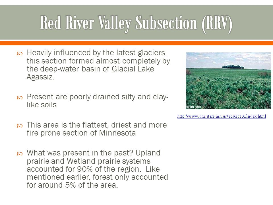 Red River Valley Subsection (RRV)