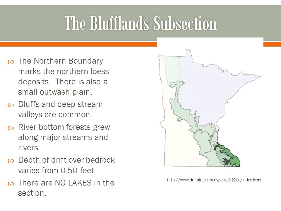 The Blufflands Subsection
