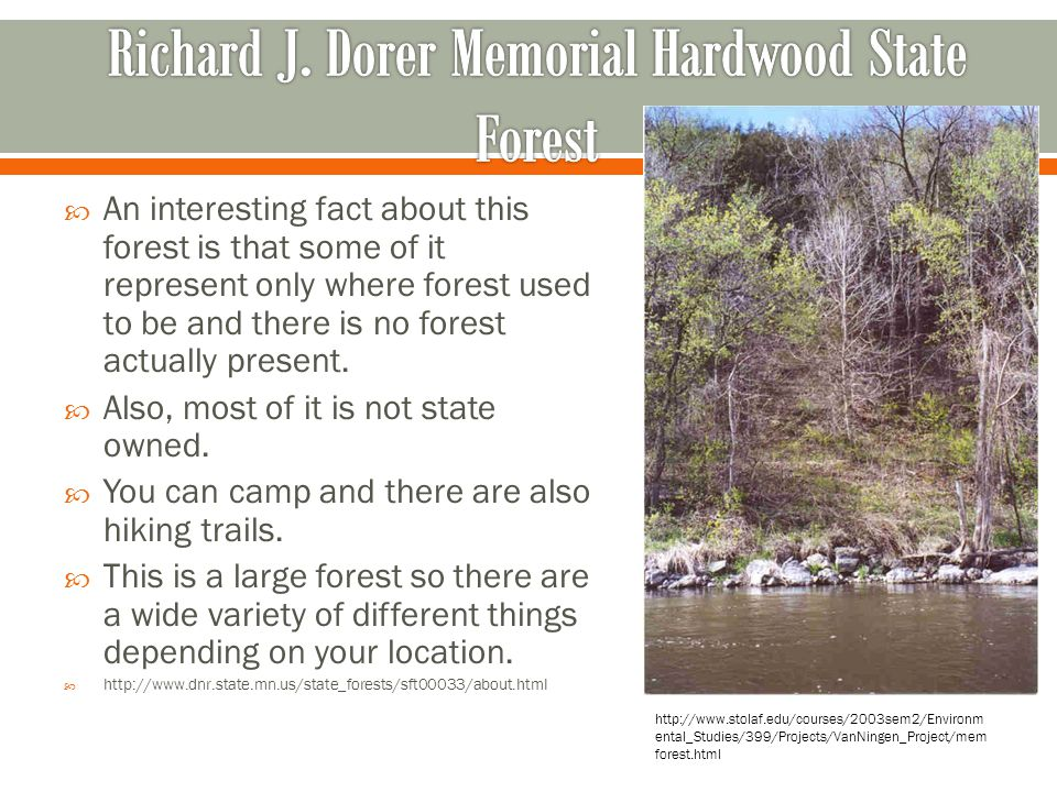 Richard J. Dorer Memorial Hardwood State Forest