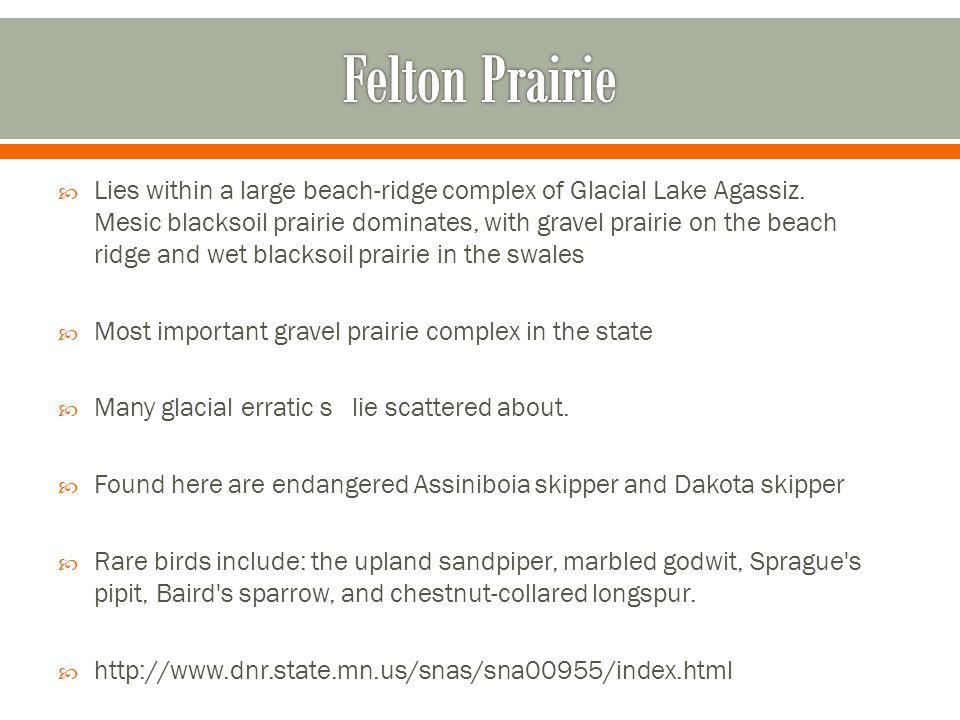 Felton Prairie