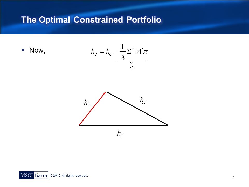 The Optimal Constrained Portfolio