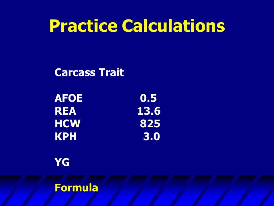 Practice Calculations